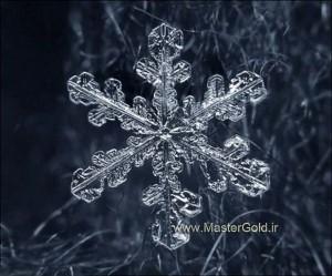 گوشواره دانه برف